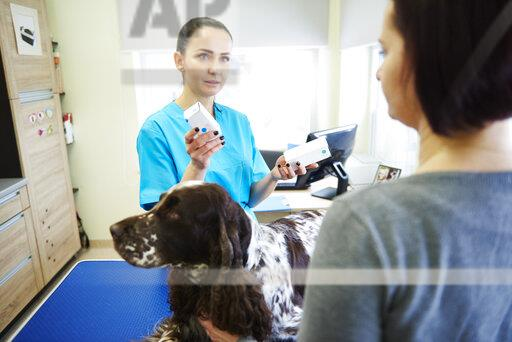 Female veterinarian giving medication to dog owner in veterinary surgery