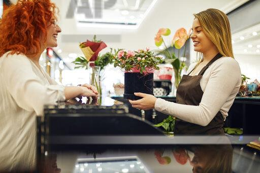 Happy customer and shop assistant with potted plant at counter in flower shop