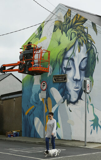 Waterford Walls 2019