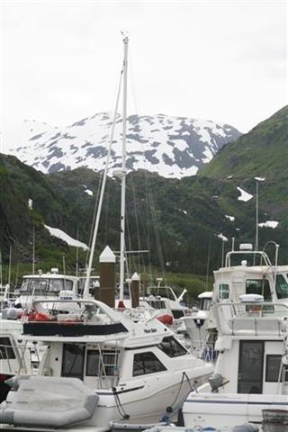 Alaska-Cruise Excursion Alternatives