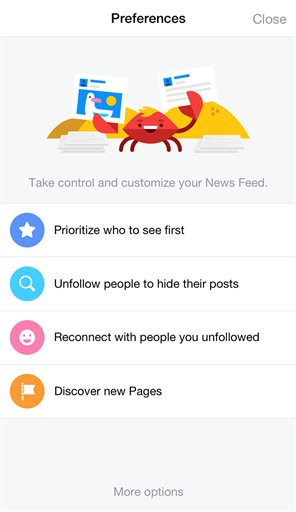 Facebook What You See