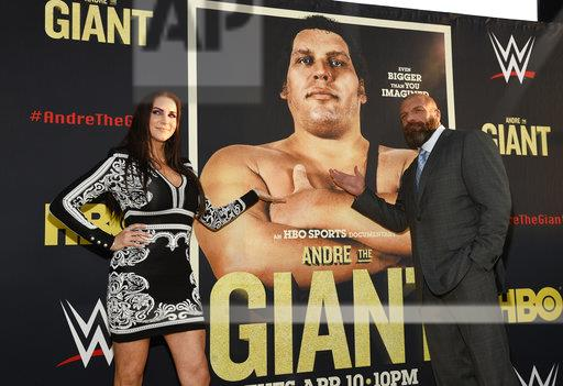 "LA Premiere of ""Andre the Giant"""