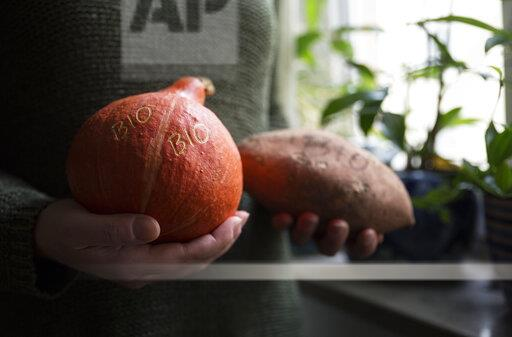 Woman's hands holding organic Hokkaido pumpkin and sweet potatoe with Smart Branding