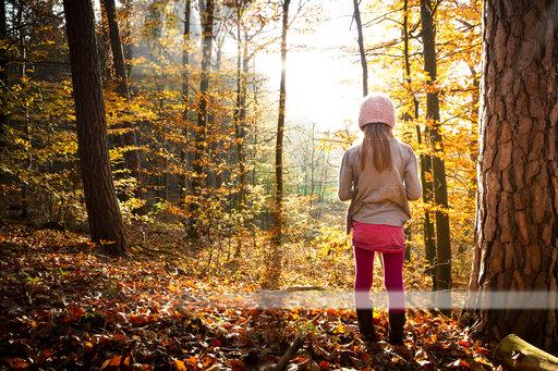 Young girl standing alone in autumn forest, rear view