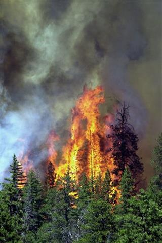 Wildfire Costs Bill