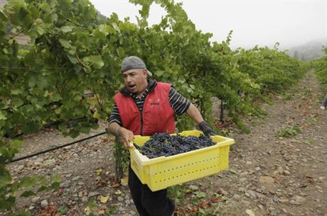 Farmworkers Overtime