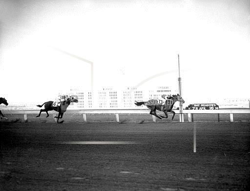 Associated Press Sports California United States Racing (animals) SEABISCUIT GOSUM BAY MEADOWS