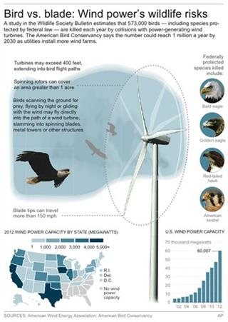 WIND FARMS BIRDS