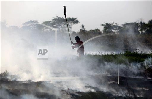 AP10ThingsToSee Indonesia Wildfires