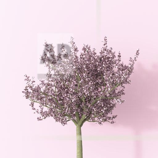 3D rendering, Blossoming cherry tree