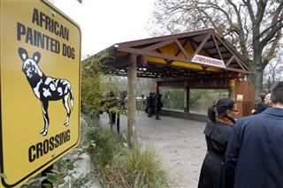 Pittsburgh Zoo Child Death