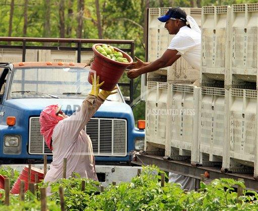 Associated Press Domestic News Florida United States South FARMWORKERS FASTFOOD