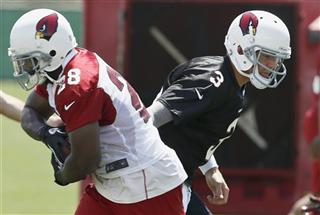 Carson Palmer, Rashard Mendenhall