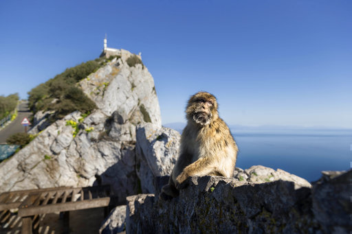 Dire straits: Gibraltar faces Brexit chaos against its will
