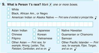 Census Negroes