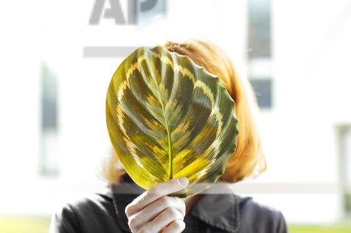 Woman hiding her face behind a leaf