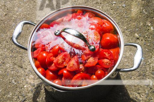 Steel cooking pot full of red tomato, cut tomatoes, agriculture, vegetable, no people, freshness, botany, organic, healthy eat