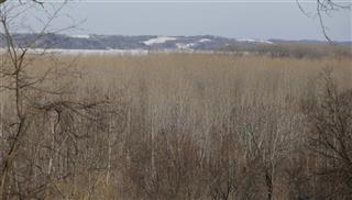 Missouri River Habitat