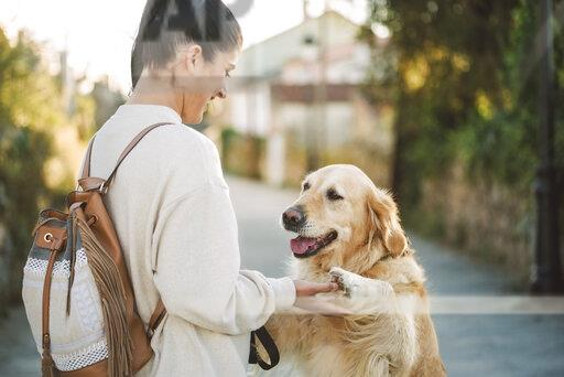 Happy young woman playing with her Golden retriever dog outdoors