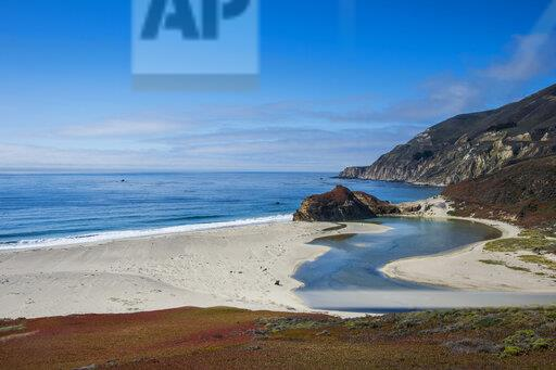USA, California, Big Sur river flowing out into the Pacific Ocean at Andrew Molera State Park