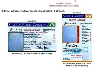 Illegal Immigrants-Licenses