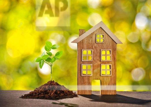 Wooden house with small plant