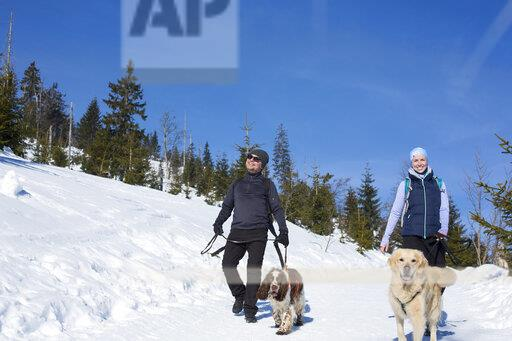 Germany, Bavarian Forest, Lusen, woman and man with dogs hiking in winter