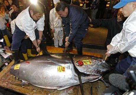 Japan Pricey Tuna
