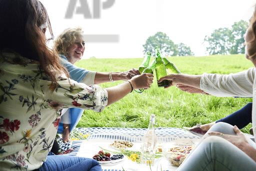 Happy women clinking beer bottles at a picnic in park