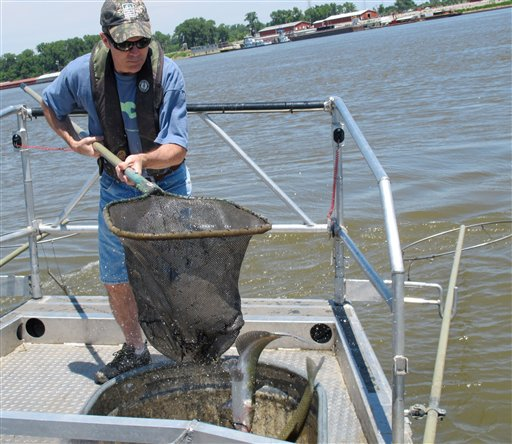 Asian Carp Science