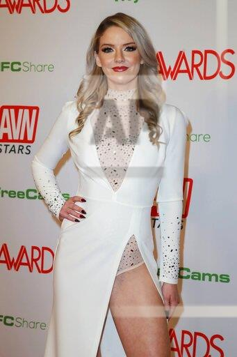 2020 Adult Video News Awards