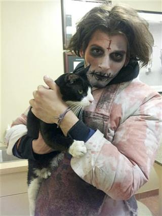 Zombie Finds Cat