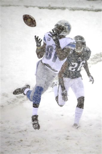 Calvin Johnson, Cary Williams