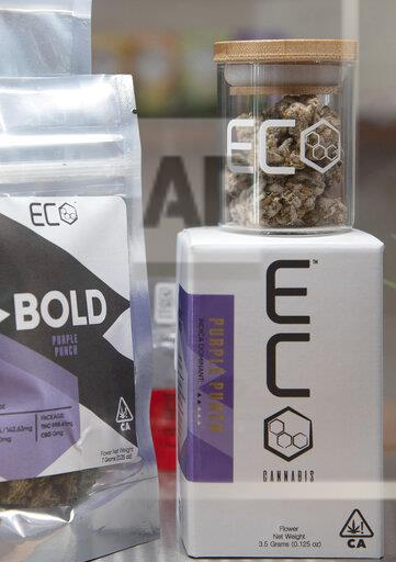 ECO Cannabis Oakland Grand Opening Media Event