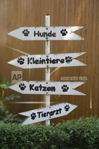 Animal shelter in Mainz