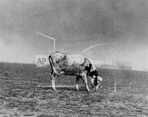 Watchf Associated Press Domestic News  Kansas United States APHS141567 The Dust Bowl Kansas 1936