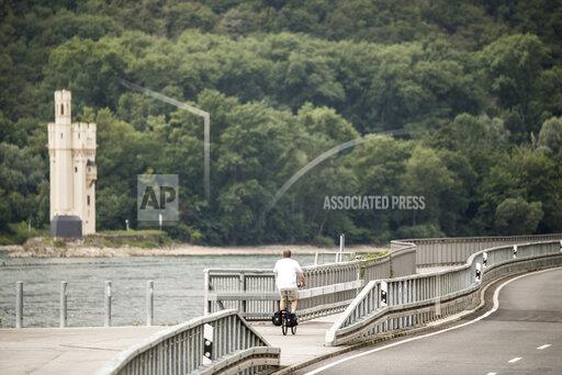 Hesse's most expensive cycle route lies on the Rhine