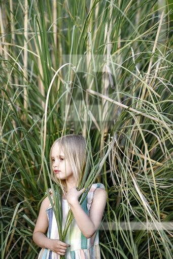 Portrait of blond little girl in front of Pampas grass