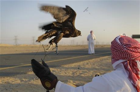 Mideast Emirates Falconry