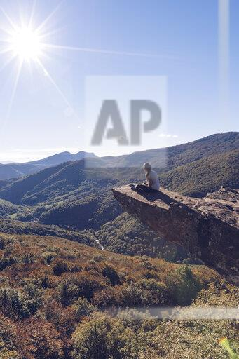 Spain, Navarra, Irati Forest, woman sitting on rock spur above forest landscape in backlight