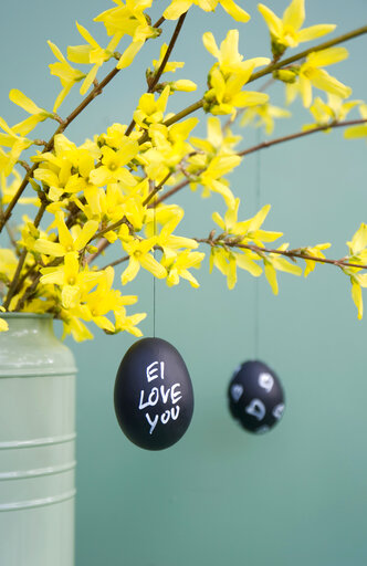 Hand-painted Easter eggs hanging from Forsythia twigs