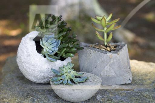 Crafts Whichcraft Concrete Planters
