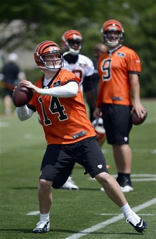 Bengals Quarterbacks Football