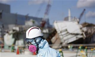 Japan Fukushima By the Numbers