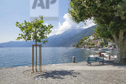Switzerland, Ascona, Lake Maggiore, lakeshore