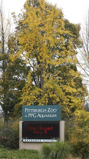 Pittsburgh Zoo Child Killed