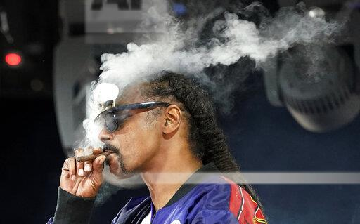 Concerts In Your Car - Snoop Dogg