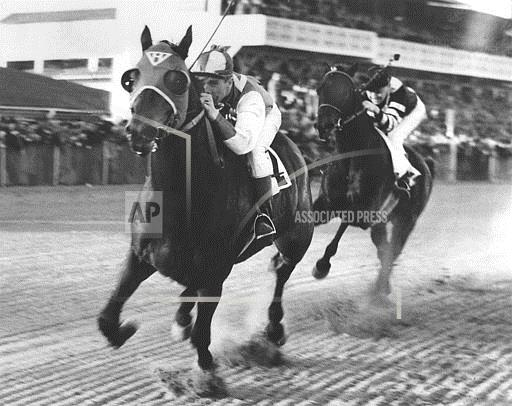 Associated Press Sports Maryland United States Racing (animals) SEABISCUIT WAR ADMIRAL