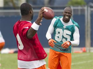 Chad Ochocinco, David Garrard