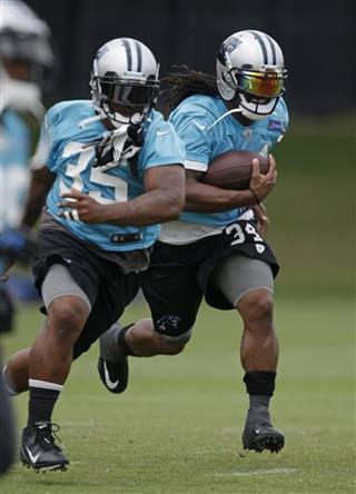 DeAngelo Williams, Mike Tolbert